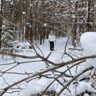snowshoeing, snow much fun